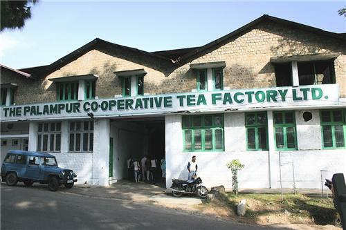 The Palampur Co-operative Tea Factory