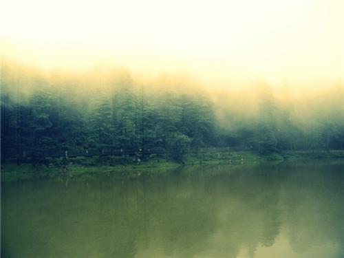 Dal Lake Dharamsala