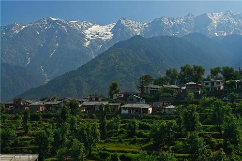 Naddi Village Dharamsala
