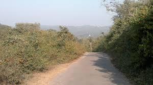 How to reach Dasuya Forest Division in Hoshiarpur