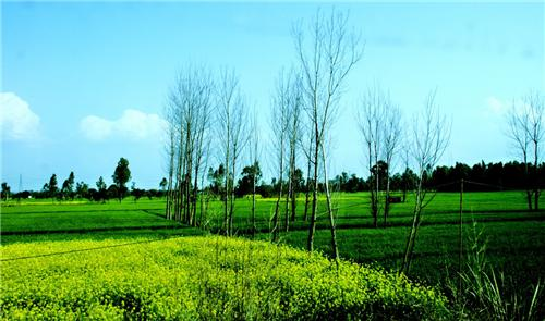 Punjab at a glance