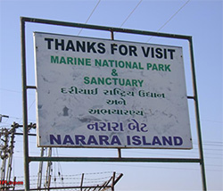 How to reach Marine National Park Jamnagar