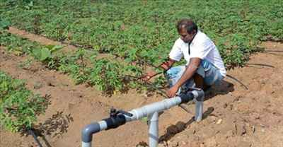http://im.hunt.in/cg/Karur/City-Guide/m1m-agriculture-karur.jpg