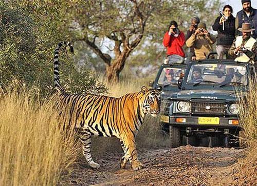Famous destinations near Khajuraho