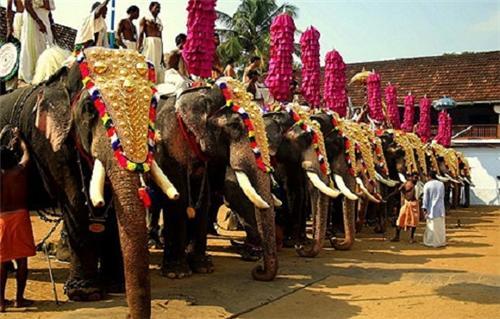 Culture of Kochi