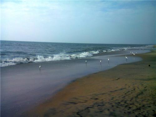 Places to Visit in Kozhikode
