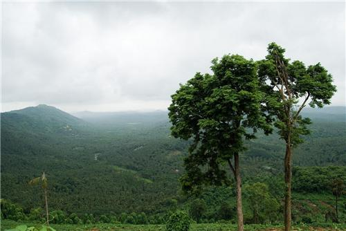 Places near kondotty