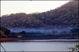 Pelhar Lake in Nalasopara