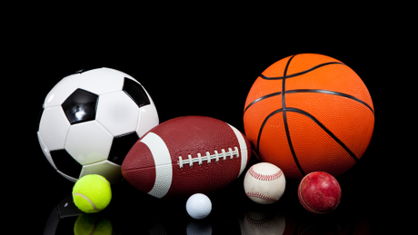 Sports Stores in Palwal