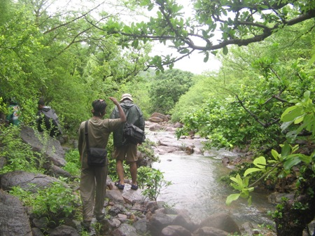 Things to do at Barda Wildlife Sanctuary