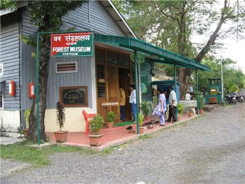 Forest Museum in Chatham Saw Mill of Port Blair