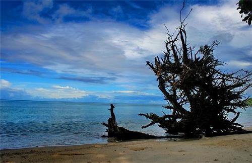 Famous beach in Port Blair