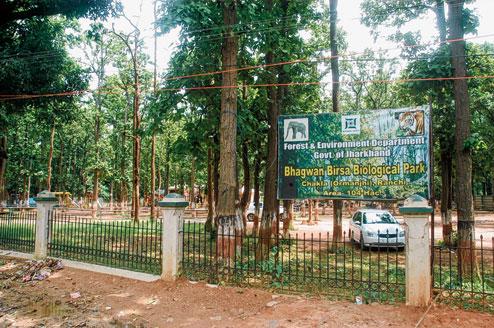 Beautiful Location of Bhagwan Birsa Biological Park in Ranchi