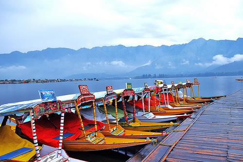 Shikara Rides at Dal Lake