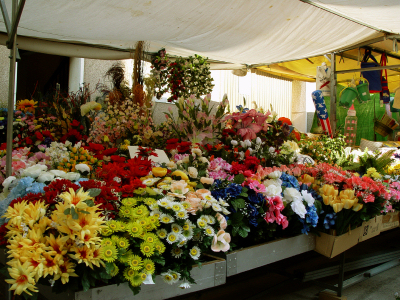 Florists in Srinagar