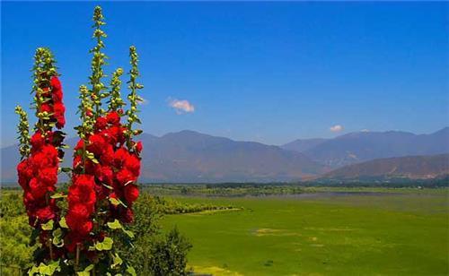 Around Wullar Lake in Srinagar