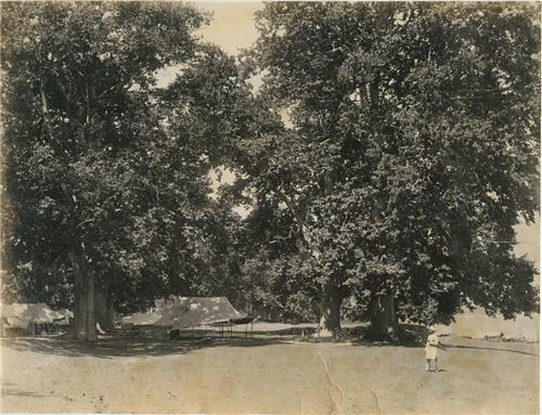 Nasim Bagh in 1900