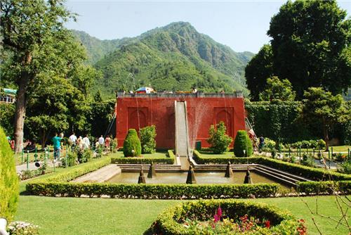 Amusing Srinagar