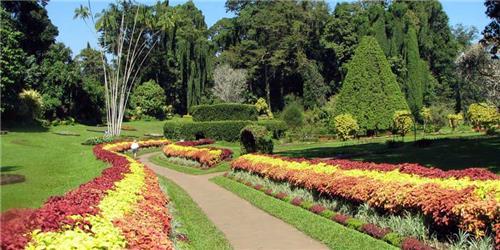 Beautiful Attractions of Jawaharlal Nehru Tropical Botanical Garden and Research Center in Thiruvananthapuram