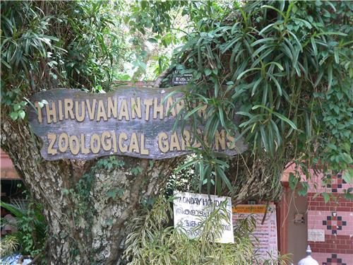 Mesmerizing Location of Thiruvananthapuram Zoological Gardens