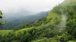 Beauty-of-Ponmudi