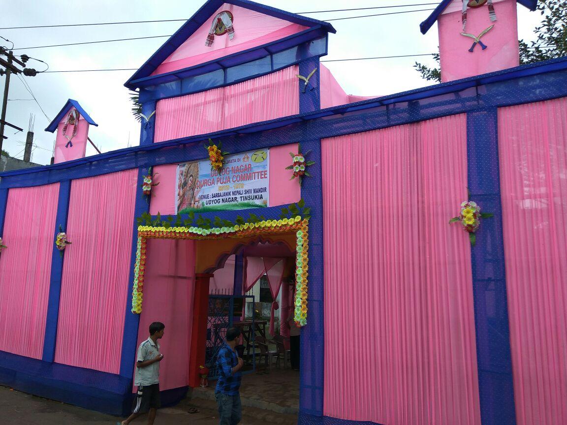 Udyog Nagar Durga Puja