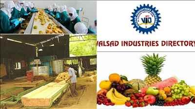 Industry in Valsad