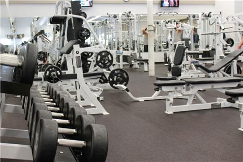 Gyms in Yamunanagar