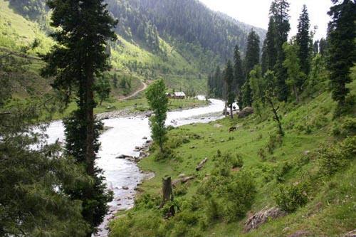 Daksum in Anantnag