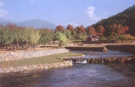 Kokernag fresh water spring