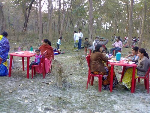 Picnic at Sarongabari Forest