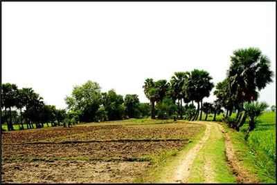 http://im.hunt.in/cg/barddhaman/City-Guide/m1m-villageinburdwan.jpg