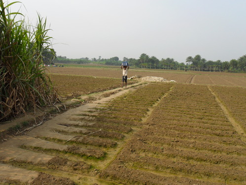 Soil in Bardhaman