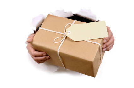 Courier Services in Bathinda