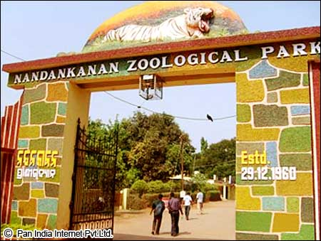 Nandankanan Zoological Park is the first Zoo of India