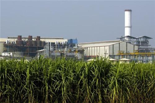 Sugar Producing Companies in Bijapur