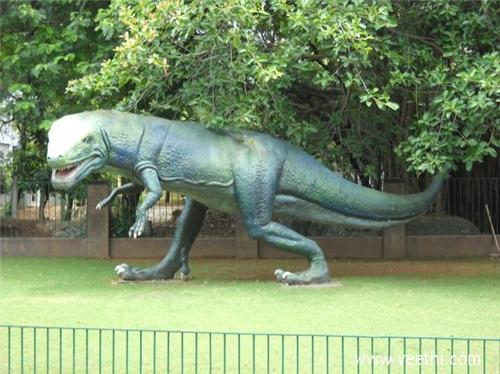 Guindy National Park in Chennai