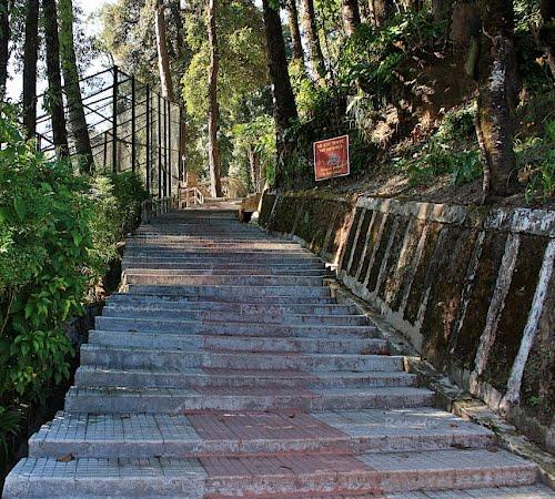 The stairs at Padmaja Naidu Zoological Park