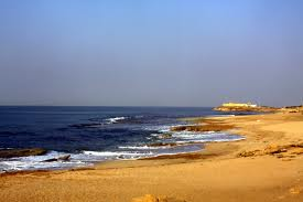 Beaches in Godhra