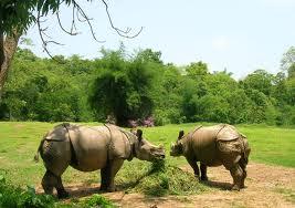 Assam State Zoo