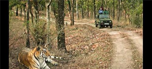 Hazaribagh National Park