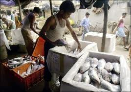 Fish Market in Howrah