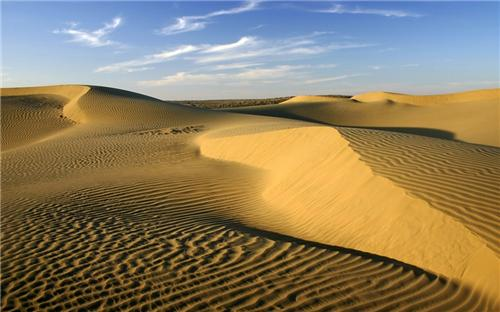 Soil of Thar Desert