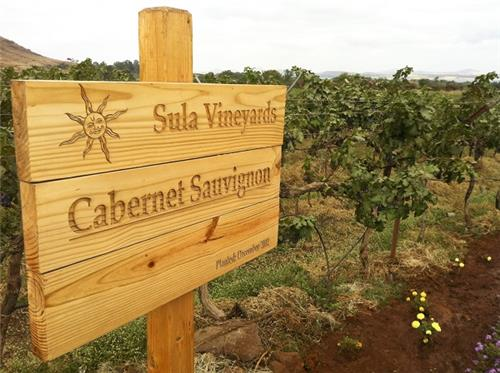 Sula Vineyards in Nashik