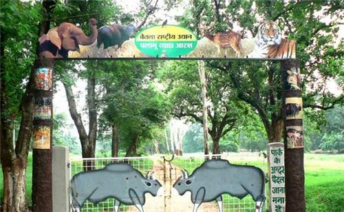 Wildlife Sanctuaries and National Parks in Jharkhand
