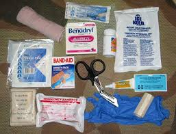 Medical Kit for Travelling with Kids