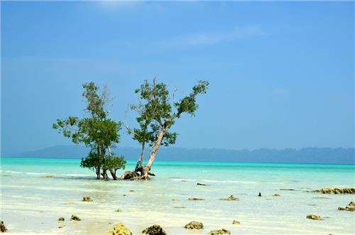 Vijaynagar Beach in Andaman and Nicobar Island