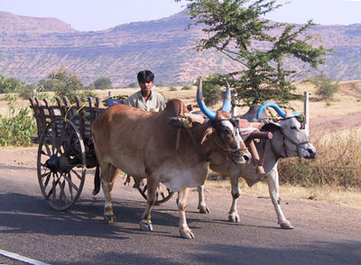 Transport System of India