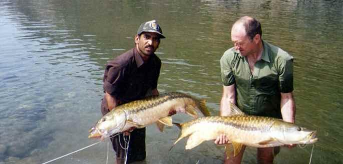 भारत में मछली पकड़ना और मत्स्य पालन