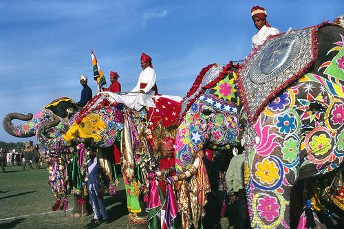 Elephant Fair in Jaipur